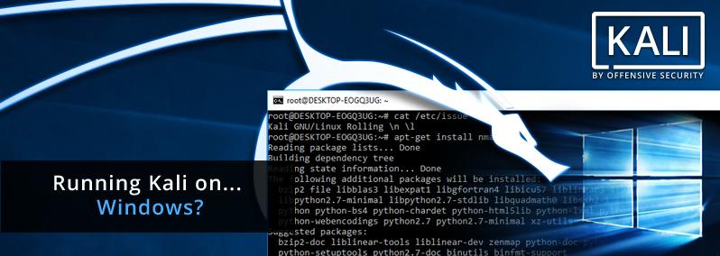 Kali Linux - Penetration Testing Distribution on Windows