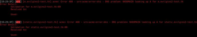 Evilginx Phishing Examples: Phishing errors