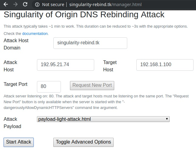 DNS Rebinding with Singularity: Manager