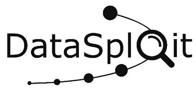 DataSploit Logo