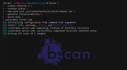 bscan: Asynchronous Target Enumeration Tool